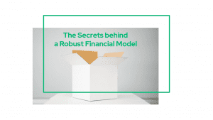 The Secrets behind a Robust Financial Model